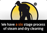 6 Stage Carpet Cleaning