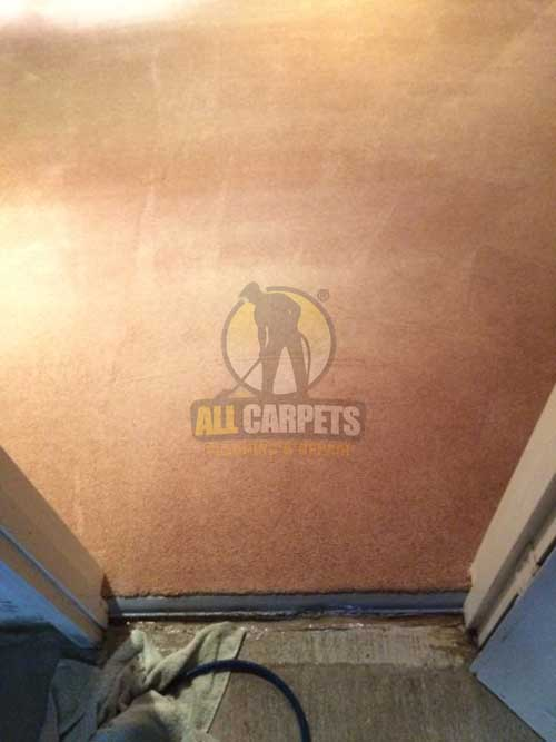 Hilton carpet come away from doorbar needed to be repaired