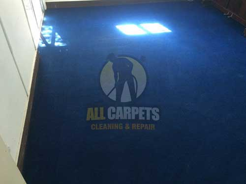 Wynnum West  dark blue carpet after cleaning