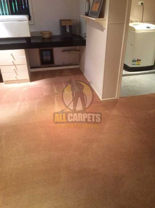 Adelaide scraped shaded carpet before being cleaned and repaired