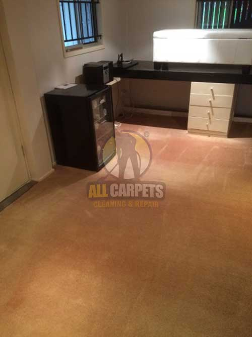 Pinkenba scraped shaded carpet before cleaning and repairing job