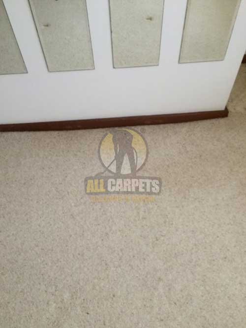 East Ipswich spot on carpet needed to be cleaned
