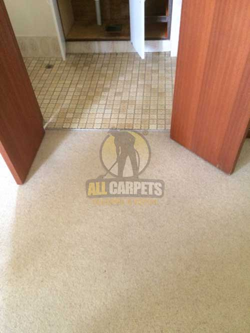 Adelaide tile and grout cleaning
