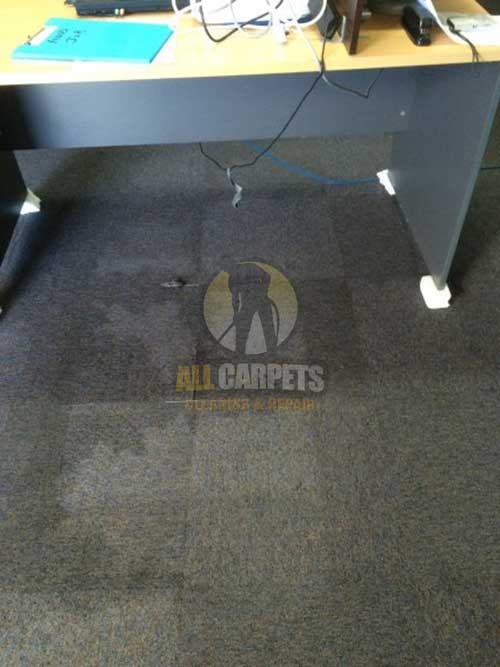 Leawood Gardens water damage carpet needed to be repaired