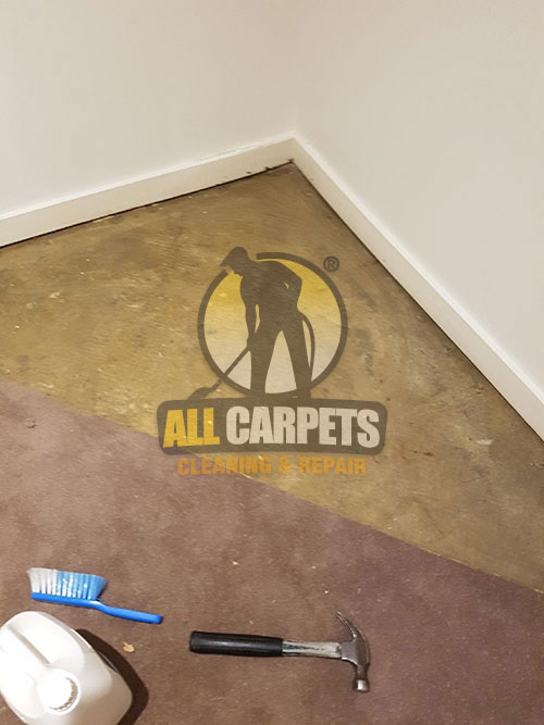 During repair floor and carpet by our experts in